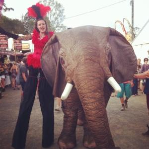 Elephant Woodford Folk Festival